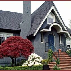 Color Combination For Indian House Exterior Paints 1
