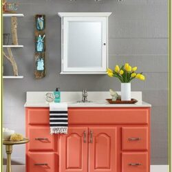 Bathroom Vanity Cabinet Painting Ideas