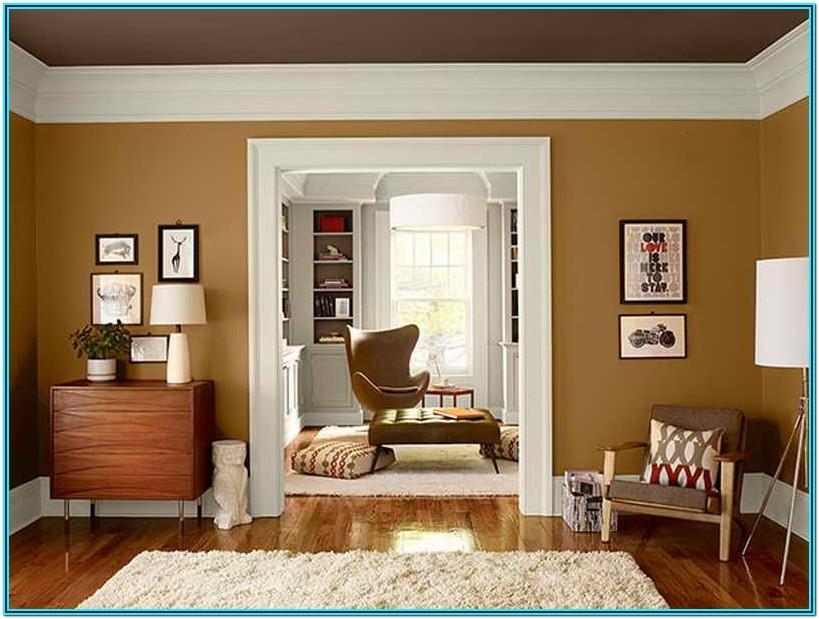 Brown Paint Color Ideas For Living Room