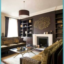 Dark Brown Paint Living Room Ideas