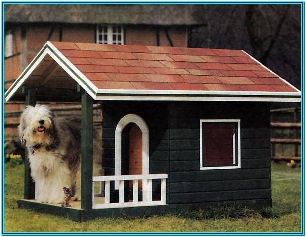 Dog Kennel Painting Ideas