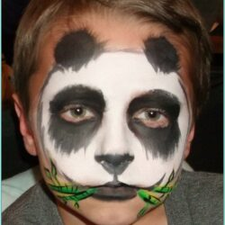 Easy Animal Face Paint Ideas