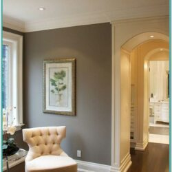 Gray Wall Paint Ideas