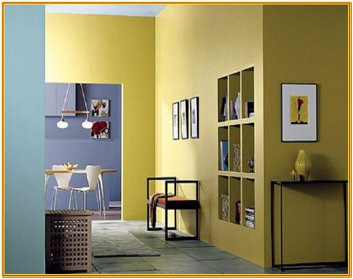 interior wall paint colors