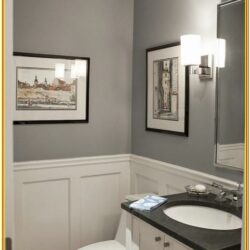 Powder Room Color Ideas 2019