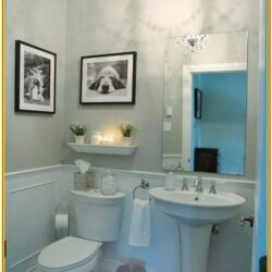 Powder Room Paint Ideas 2019
