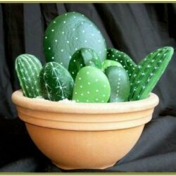 Stone Painting Ideas Cactus
