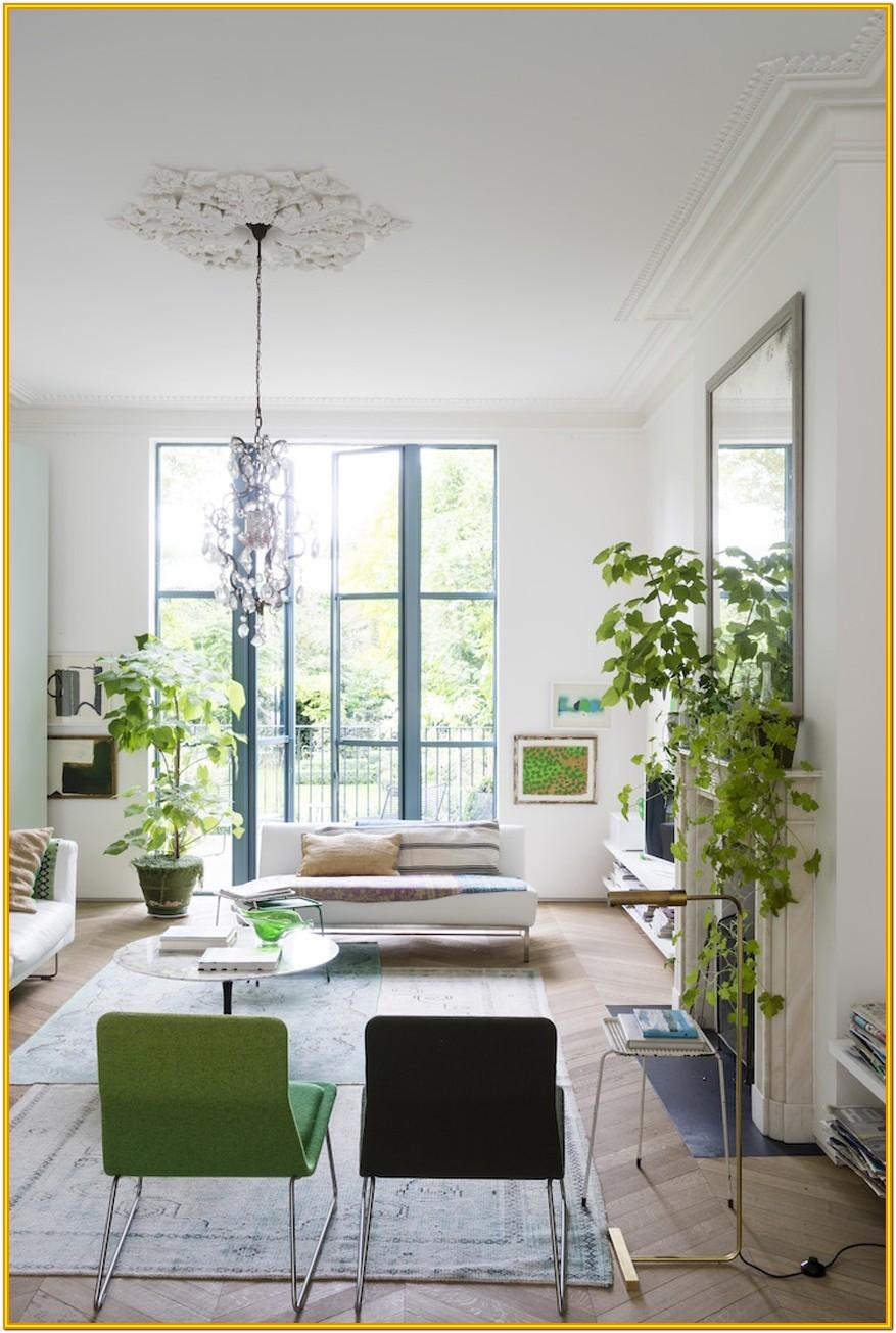 Decorate Living Room With Indoor Plants