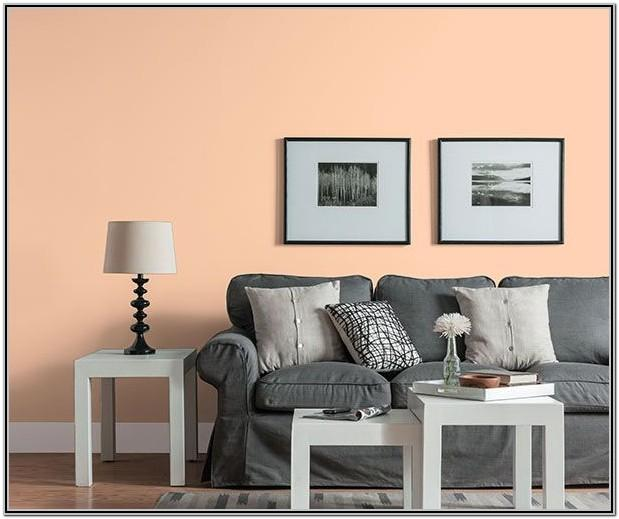 Living Room Decor With Peach Walls